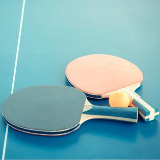 Tennis de Table - réception mariage seminaire gite vienne lyon valence Domaine de la Barbeliere